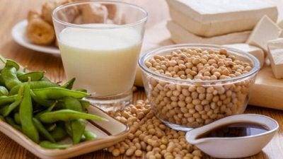 Soja é um vegetal rico em cálcio