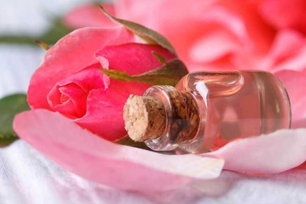 Tônico de rosas