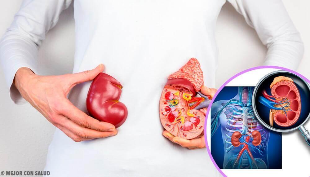 5 coisas que você deve saber sobre o transplante renal