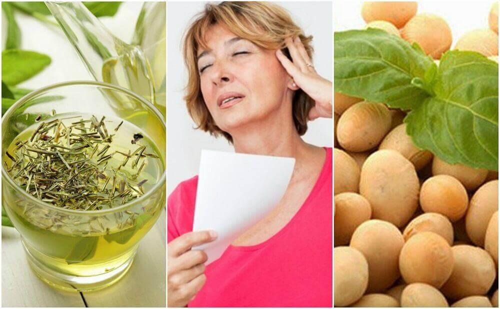 5 produtos naturais para controlar a menopausa