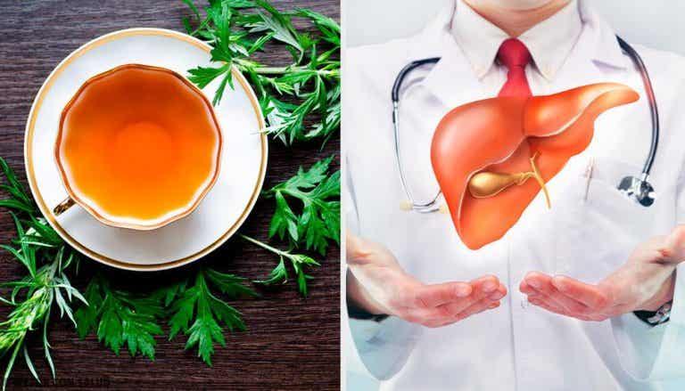 9 propriedades do absinto para a saúde do nosso fígado