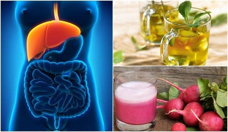 Descubra como tratar o fígado gorduroso naturalmente