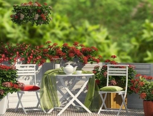 Um jardim agradável no terraço