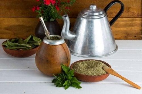 A erva mate possui inúmeras propriedades, ao consumi-la regularmente colhemos muitos benefícios