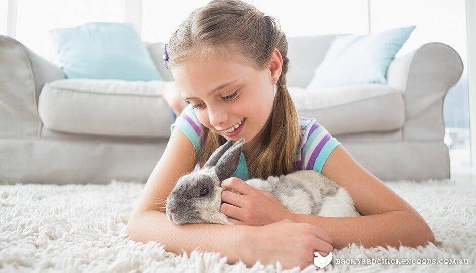 Criança acariciando coelho