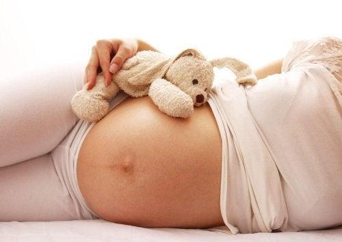 Ciclos da gravidez: sono
