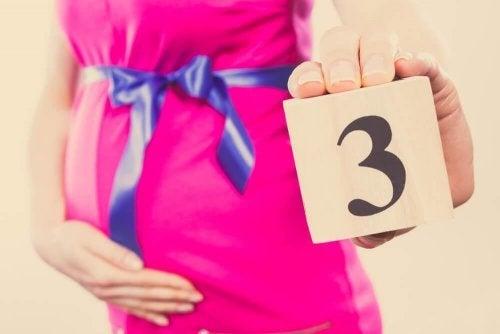 Ciclos da gravidez: terceiro mês