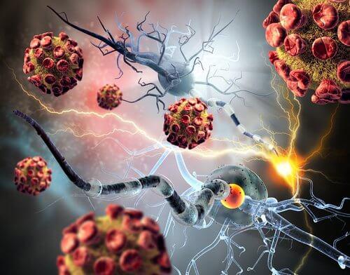 Vacina contra tumores cancerígenos agindo contra células tumorais