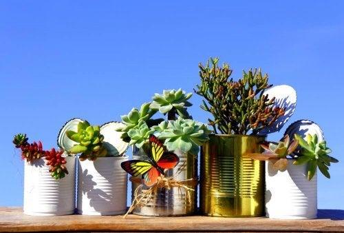 Vasos de plantas reciclados