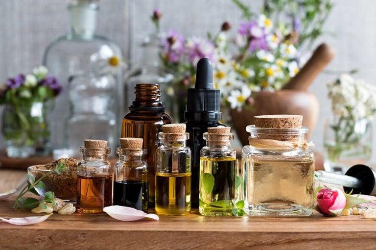 5 óleos essenciais e seus benefícios
