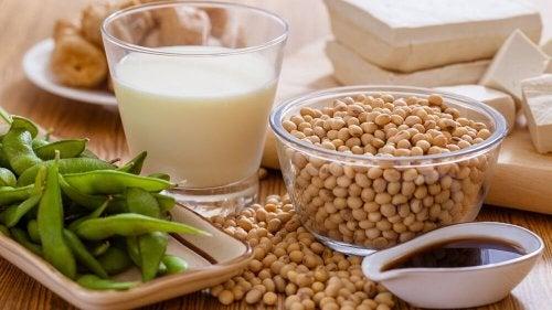 Proteínas vegetais ajudam a controlar o colesterol alto