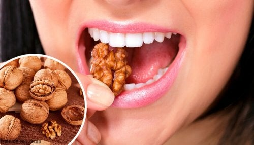 Consumir frutos secos ajuda a reduzir o fluxo na menstruação