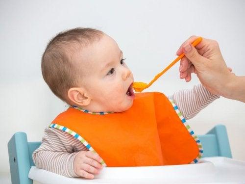 Benefícios de dar papinhas de frutas para os bebês