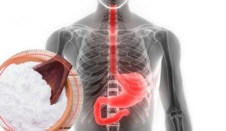Bicarbonato contra o refluxo