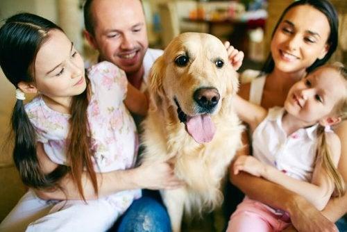 Familia acariciando o seu animal de estimação