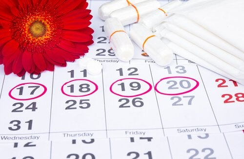 Calendário que motra o ciclo menstrual