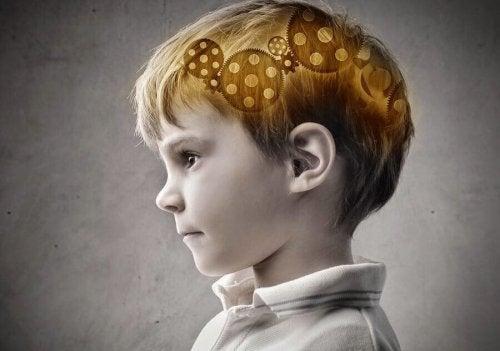 O cérebro das crianças