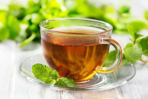 O chá verde, além de conter muitos antioxidantes, é diurético