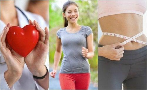 Uma caminhada diária contribui para a saúde cardiovascular e para a perda de peso
