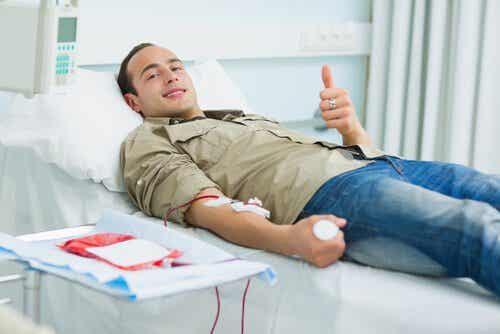 Mitos e verdades sobre doar sangue