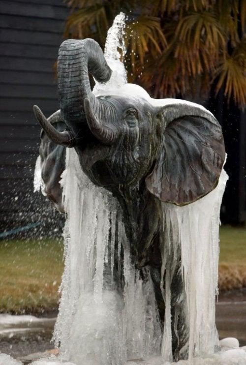 Fontes de água com estátuas