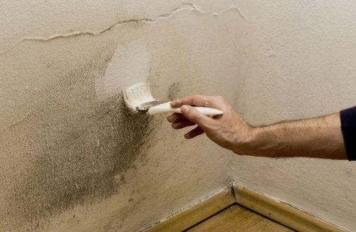 5 maneiras de combater a umidade em casa