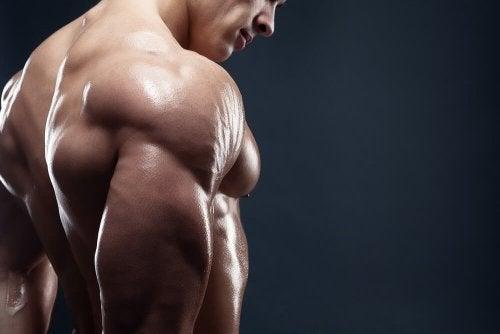 4 deliciosos cafés da manhã para aumentar sua massa muscular