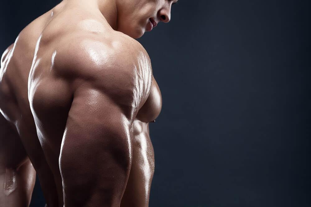 4 deliciosos desjejuns para aumentar sua massa muscular