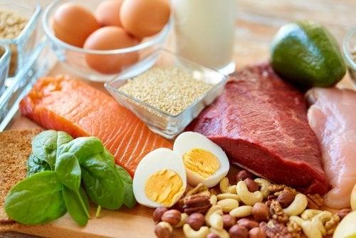 Alimentos permitidos na dieta da zona
