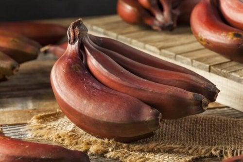 Bananas vermelhas maduras