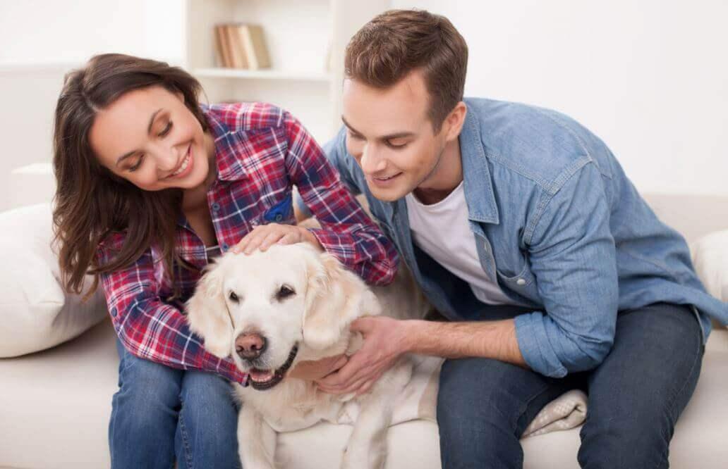 Benefícios para a saúde de ter um animal de estimação
