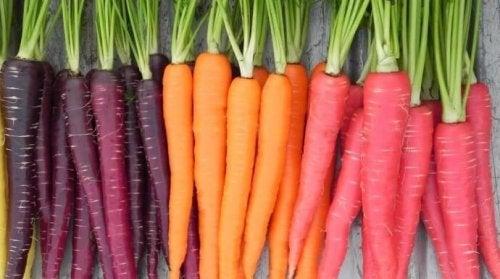 Grandes propriedades da cenoura para a saúde