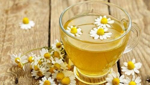 Chá de camomila ajuda a aliviar o glaucoma