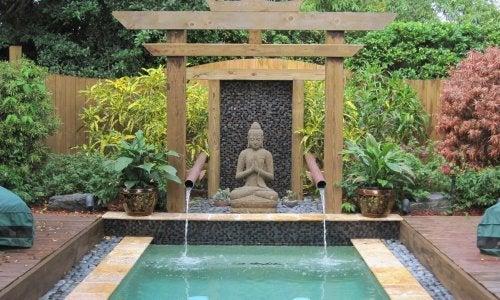 Com Buda