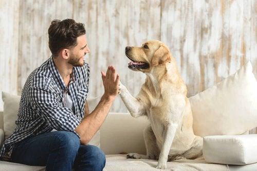 Homem com animal de estimação