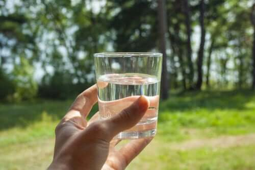 Qual a importância e os benefícios de manter o organismo hidratado?