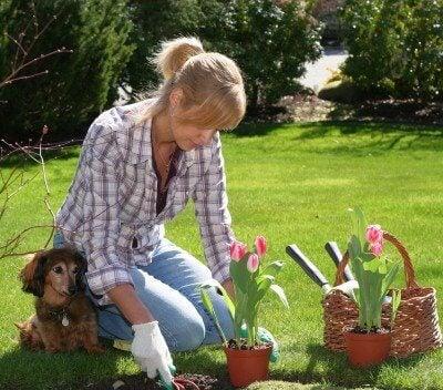 Mulher trabalhando no jardim
