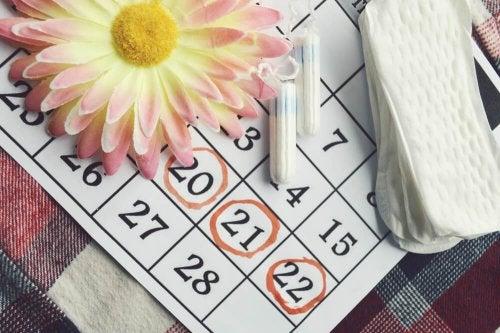 Quando ocorre a normalização da menstruação após o parto?