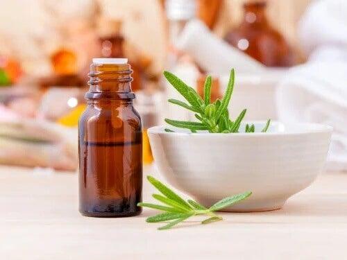 5 remédios com alecrim para embelezar o cabelo