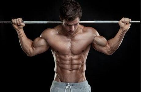 Rotina para fisiculturistas com peso