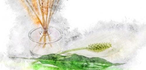 Frascos de perfumes velhos podem servir de difusor