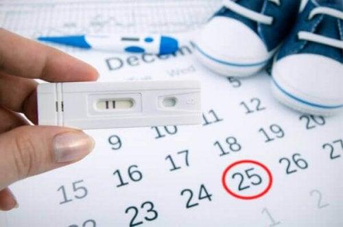Mulher calculando dias férteis