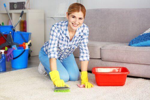 5 truques para limpar tapetes de forma natural