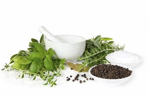 As plantas medicinais são usadas na medicina alternativa