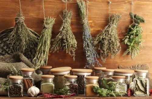 Ervas aromáticas: o segredo da cozinha mediterrânea