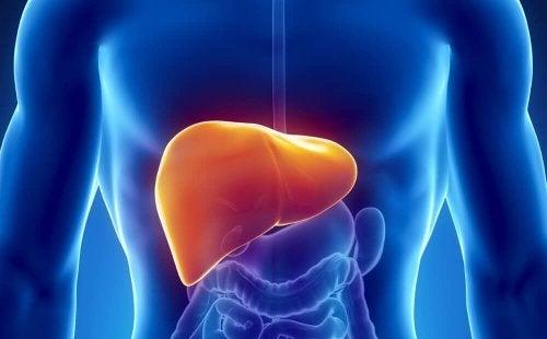Dieta para desintoxicar o fígado