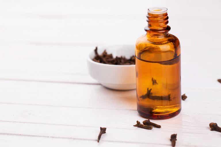 Como usar cravo-da-índia para melhorar a digestão