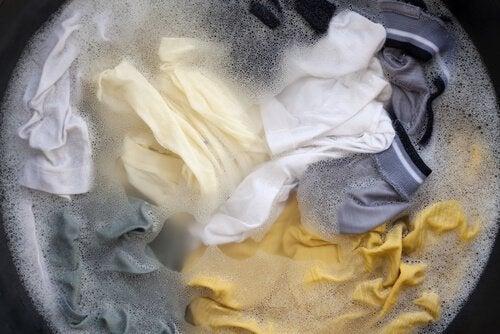 Pode limpar os vidros com sabão para lavar roupa