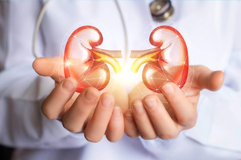 Incrível dieta para limpar os rins