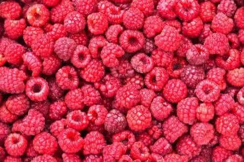 Framboesas: descubra como consumi-las em sua dieta